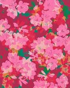 Azalea print // Allison Holdridge // #floral
