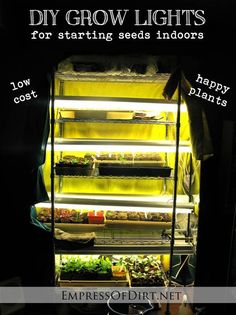 Easy and inexpensive grow lights for starting seeds at home http://www.empressofdirt.net/fluorescent-grow-lights-for-starting-seeds-indoors-my-setup/