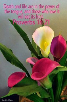 Proverbs 18:20-21 Life And Death Are In The Power Of The Tongue ...