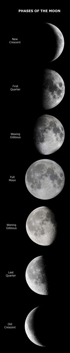 Lunar phases --- for inspiration. If I ever get my lunar phases tattoo, I want it to be realistic, not just lines.