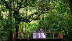 Costa Rica Honeymoon Ideas