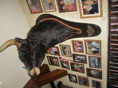 """The bull"" in restaurant Casa Olivares"