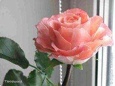 Розы из холодного фарфора и как сделать молды для лепки листьев (33) (520x390, 80Kb) Fondant Flower Tutorial, Rose Tutorial, Fondant Flowers, Resin Flowers, Sugar Flowers, Silk Flowers, Paper Flowers, Biscuit, Cold Porcelain Flowers