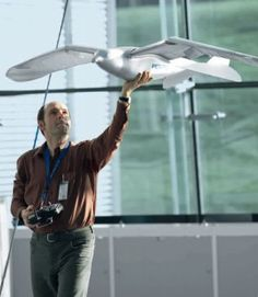 Festo's magnificent and highly operative robotic bird.