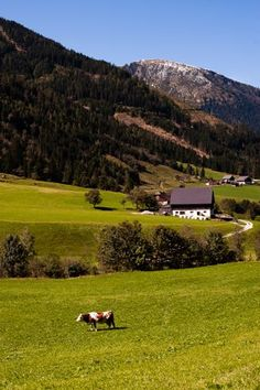 Austria ... Book & Visit AUSTRIA now via www.nemoholiday.com or as alternative you can use austria.superpobyt.com. For more option visit holiday.superpobyt.com