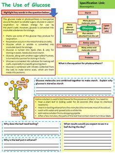 Gcse Biology Revision, Gcse Physics, Basic Physics, Biology Teacher, Science Biology, Teaching Science, Life Science, Chemistry Notes, Science Notes