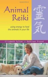 Animal-Reiki-Using-Energy-to-Heal-the-Animals-in-Your-Life