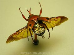 Artist uses a combination of real insects and mechanical parts.