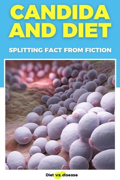 Candida is a fungus that can grow in the human body. A condition called Candida Overgrowth Syndrome is said to occur if levels in the gut become too high. But is it actually a real condition, and does diet play a role? This article explores the current research. #dietitian #nutrition #nutritionist #health Nutrition Education, Nutrition Tips, Healthy Nutrition, Thyroid Diet, Candida Diet, Candida Overgrowth, Food Intolerance, Fodmap Diet, Natural Health Remedies