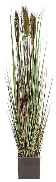 Home affaire Kunstpflanze »Gras« Jetzt bestellen unter: https://moebel.ladendirekt.de/dekoration/dekopflanzen/kunstpflanzen/?uid=98f5d8a4-78e0-562b-b4d2-ed70d48d52bc&utm_source=pinterest&utm_medium=pin&utm_campaign=boards #dekopflanzen #dekoratives #kunstpflanzen #dekoration