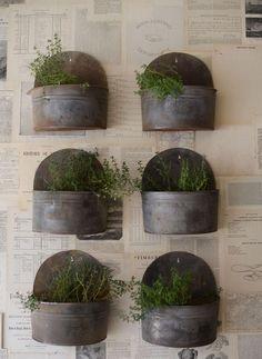 galvanized metal planters.... I love anything galvanized.