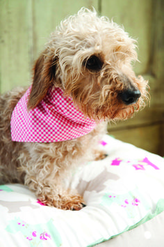 This nice and easy free dog bandana sewing pattern by Mandy Shaw attaches to your dog's collar and makes any dog look like a fashionista! Free templates included.