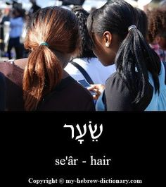 "How to say ""hair"" in Hebrew: This word is clearly a word from Biblical Hebrew, going back at least to Beresheet (Genesis) 25:25. However it is much more common in the Tana""ch to see it written with a shin, which is a differnt word that means ""gate"". Click here to hear the audio pronunciation: http://www.my-hebrew-dictionary.com/hair.php #learntospeakhebrew"