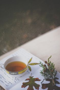 Autumn`s starting with a cup of tea and ending with a whole pot