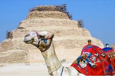Great Pyramids, Saqqara and Memphis Private Day Tour A private day tour to visit the Giza plateau, the Step Pyramid Complex of Djoser at Saqqara and Memphis the hieroglyphic name is (Men-nefer) built by King Narmer. The tour includes Lunch, Entrance fees and private tour guideOur Egyptologist guide with our professional driver will pick you up from your hotel lobby, you will then start your tour to visit a funerary complex of King Djoser, the step pyramid of Saqqara which was ...