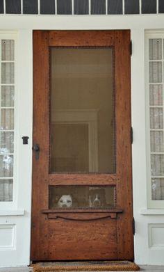 Cute doggies but I love the screen door!