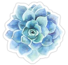 Watercolors blue tone succulent illustration • Also buy this artwork on stickers, apparel, phone cases, and more.