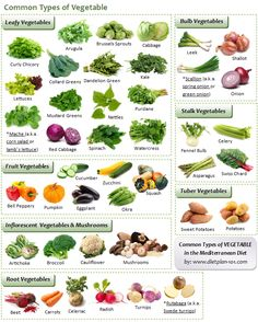 Common Types of Vegetable in Mediterranean Diet