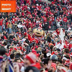 Good day to be Brutus! Nov. 26, 2016