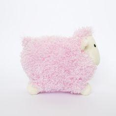 Curley Sheep