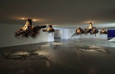 Spectacular Gravity-Defying Tree Root Chandeliers - My Modern Metropolis
