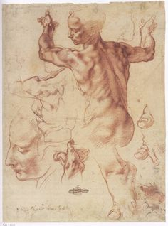 Michelangelo life drawing