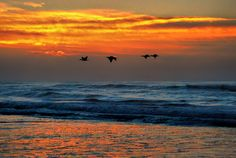 A sunrise scene on hartenbos beach, South Africa. Beautiful Sky, Mother Nature, South Africa, I Am Awesome, Sunrise, Waves, Scene, In This Moment, Beach