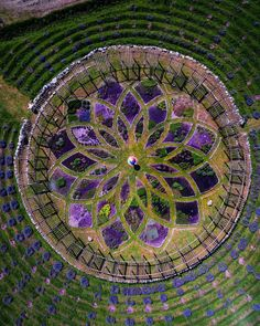 This farm's crazy lavender labyrinth is said to be a metaphysical experience. This is gorgeous; if ever in Michigan! Labyrinth Garden, Phantom 4, Farm Gardens, Green Garden, Aerial Photography, Landscape Architecture, Architecture Design, Garden Planning, Sculpture