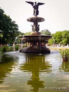 Central Park - New Y