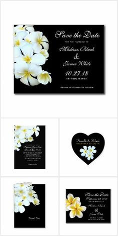 Hawaiian plumeria wedding invitations, in white on black, are elegant and tropical themed.  The beautiful, pure white plumeria / frangipani flower has yellow at the center, and is a stand out floral design for a neutral palette wedding.