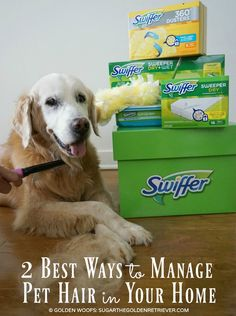 2 best ways to manage #pethair in your home with #Swiffer #SwifferFanatic shed happens! daily grooming and pet hair with swiffer cleaning products