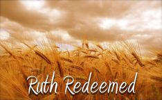 BSF Study Questions People of the Promised Land Lesson Day Ruth 4 The Story Of Ruth, Book Of Ruth, Bible Study Questions, Ruth 4, Ruth Bible, Promised Land, Scripture Study, Another Man, Neon Signs