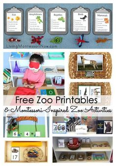 Lots of free zoo printables and Montessori-inspired zoo activities for multiple ages; perfect for home or classroom - Living Montessori Now Zoo Preschool, Preschool Printables, Preschool Themes, In Kindergarten, Free Printables, Classroom Themes, Zoo Animal Activities, Montessori Activities, Preschool Activities