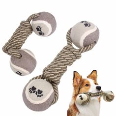 Funny Dog's Chew Toys Cotton Rope Dumbbell Tennis Pet Toy Puppy Dog Teeth Cleaning Training Tool For Dogs // Worldwide FREE Shipping //     #dogsupplies