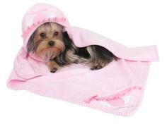 KUKA´S WORLD - Ropa y Accesorios exclusivos para Perros. Moda Canina de Diseño y Artículos para Mascotas con estilo. Designer Dog Clothes and Luxury Accessories for Pets! http://www.kukasworld.com/
