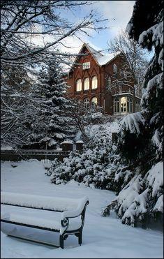 Winter Szenen, Winter Love, Beautiful Winter Scenes, Winter's Tale, Snowy Day, Snowy Woods, Snow Scenes, Winter Beauty, Winter Pictures