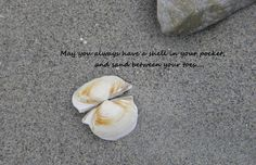 I took some of my favorite pictures I've taken at the beach, and added quotes to them