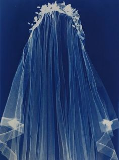 Antique headdress and veil by Angela Chalmers. Makes me want to design wedding… Love Blue, Blue And White, Blue Cream, Cyanotype Process, Sainte Cecile, Sun Prints, Alternative Photography, Photo Processing, Shades Of Blue