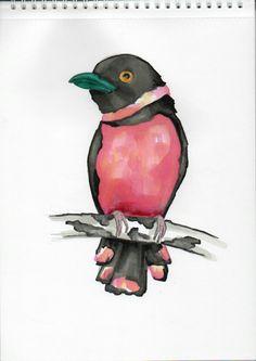 Bird, tattoo, projekt, pink, color