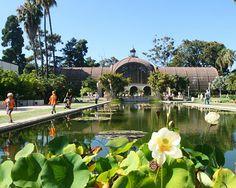 Botanical Garden at Balboa Park San Diego