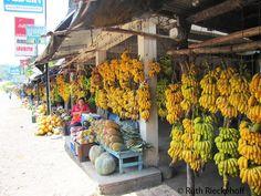 Bananas, Copan Ruinas, Honduras Just looking at this evokes the smell of stalks and stalks of naturally ripening bananas! YUM!