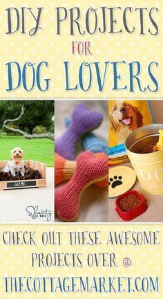 Treat your pet to a little homemade love with these DIY pprojects for dog lovers - The Cottage Market