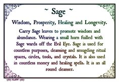 Sage: representing wisdom, prosperity, healing and longevity. You have to know your herbs if you want to hang out with The Dolls. #TheDolls