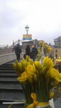 Ha'penny Bridge Dublin in early Spring