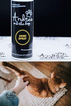 Dieser Spray dient der natürlichen Fellpflege deines Lieblings und verleiht seidigen Glanz und unterstützt die gesunde Haut. Durch die chemiefreie Rezeptur landet nur auf deiner Katze, was siw wirklich gut verträgt und andere Lebewesen können bedenkenlos kuscheln, schmusen und kraulen.  Bei ganz schlimmen Fellirritationen: das #andreaandthedog Fellöl und das Wash SENSITIV dazu.  #katzenliebe #katze #katzenpflege #cat #catlover #shinyfur #fellpflege #fellglanz #naturpur… Cat Lover, Dog, Cats, Healthy Skin, Sparkle, Cuddling, Nursing Care, Diy Dog, Gatos