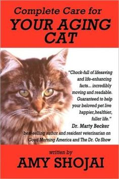 A helpful guide to care for a senior cat.