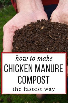 How to make the BEST chicken manure compost, really quickly. Garden-ready in just 18 days!