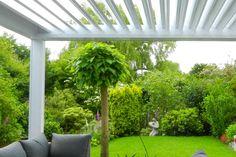 Overkapping in de tuin | Materialen (aluminium), hoe maken/kopen | 2020 Plants, Plant, Planets