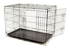Dog Crate Large 2 Door Pet Kennel Cage Folding Portable Travel Metal > See this awesome image : Dog crates Collapsible Dog Crate, Youtube Dogs, Plastic Dog Crates, Large Dog Crate, Pet Kennels, Dog Cages, Dog Shower, Dog Shedding, Dog Chew Toys