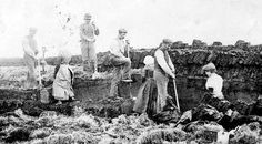 Old photograph of cutting Peats on the Orkney Islands of Scotland